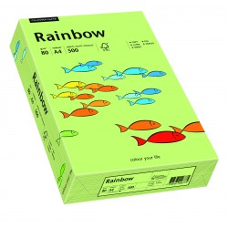 Papier xero kolorowy Rainbow jasno zielony 74
